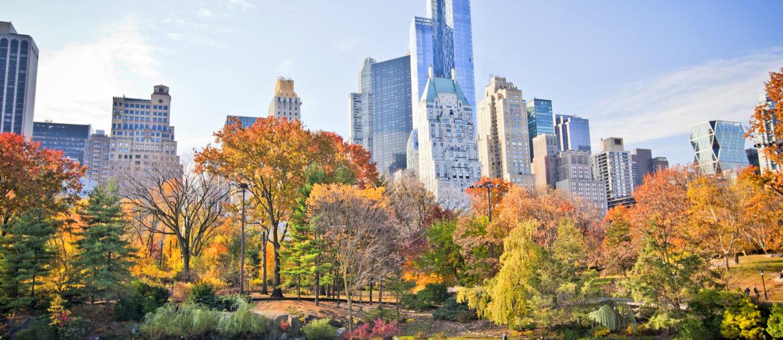 Juleshopping i New York: 5 dage på 3,5* hotel inkl. fly for kun 2821 kr.
