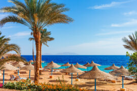 Charterrejse til Egypten